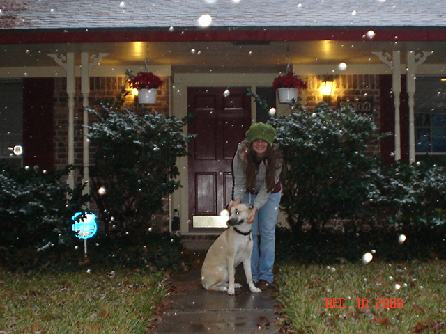 Our House When It Snowed