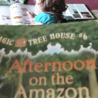 Afternoons on the Amazon