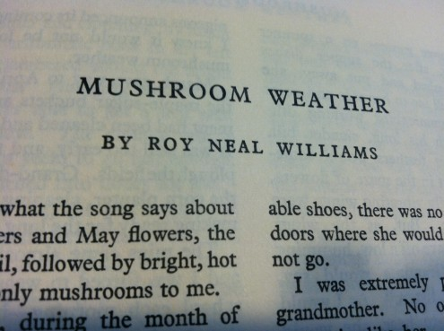 Mushroom Weather 2