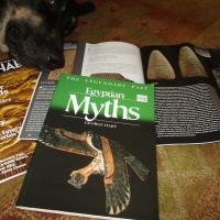 Fever Dreams and Egyptian Myths